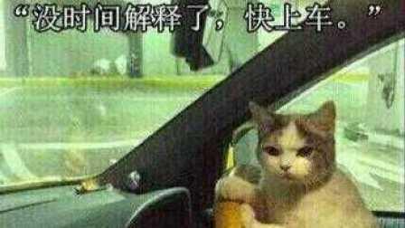 【舍长制造】舍长带你开车