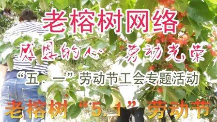 """老榕树""""5.1""""劳动节工会活动(劳动最光荣)"""