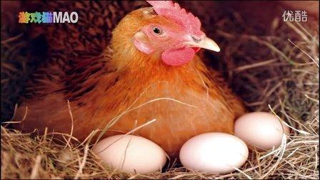 游戏猫MAO 母鸡下蛋 孵小鸡 小动物 疯狂动物城 奇趣动物园 鹅 老虎 狗