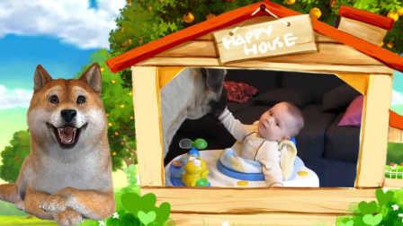 黄黄的幼儿园:小宝宝和狗狗抢食,萌化了