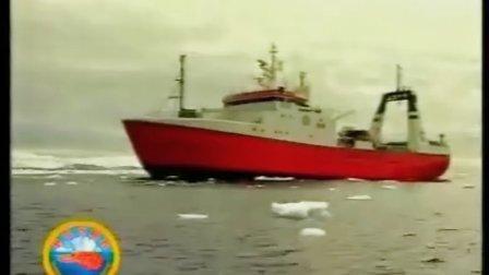 野生北极虾产地揭秘视频