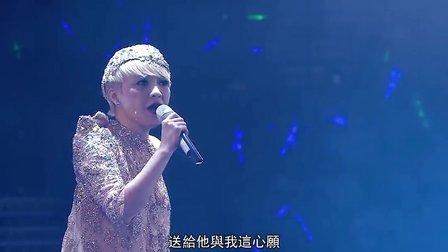 陈慧娴2014红馆30周年演唱会 全场中文字幕BD超清完整版