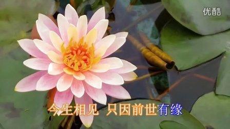 《龙怀...佛缘》大悲咒 佛教音乐歌曲大全100首经典佛歌佛经全文梵唱念诵阿弥陀佛