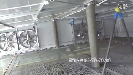 欣赏看看国内现代化的自动鸭鹅养殖场(山东凤翔农牧工程展示)