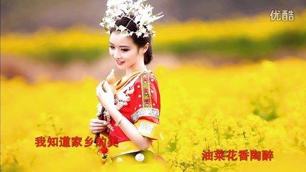 视频歌曲—美女与油菜花—kTV歌曲《油菜花之恋》-超清