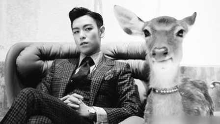 Showbiz Korea 第28集:问答!BIGBANG 《崔胜贤(T.O.P)》