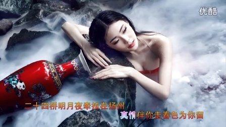 视频歌曲—精彩视频—KTV歌曲《阳春三月下扬州》-超清