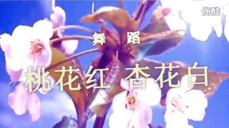 舞蹈:桃花红杏花白(扇  巾)