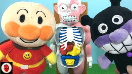 日本人体模型惊吓玩具