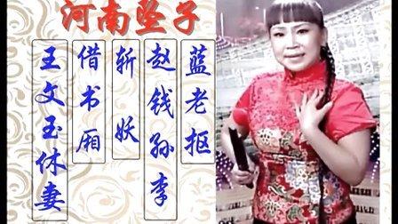 河南坠子 蓝老抠 赵钱孙李 斩妖 借书厢 王文玉休妻 演唱:胡中花