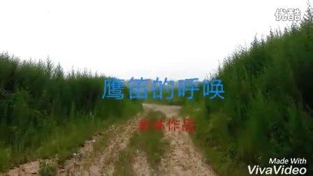 【音乐视频】四海之鹰笛呼唤红嘴山鸦