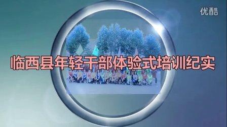 临西县年轻干部体验式培训纪实
