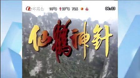 仙鹤神针01(粤语)