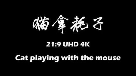 猫拿耗子 UHD 4K 30fps 50Mbps