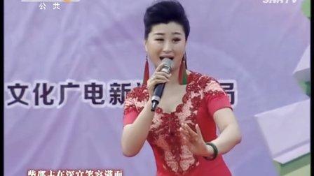 2016秦声飞扬《秦腔名家唱段选》14 李君梅 马丽 师大庆 张雅琴等演唱