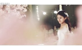 LG婚礼集锦 案例图片