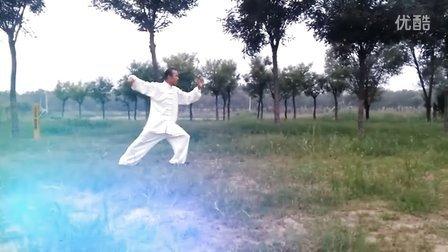 杨氏太极拳四十式(夲一习练)