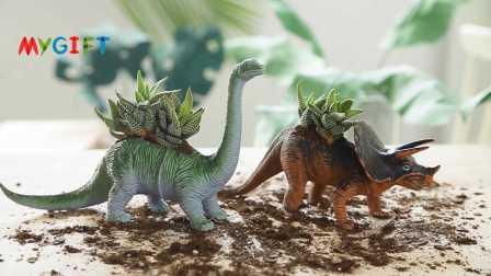 MYGIFT-手工制作-创意改造恐龙多肉小盆栽,赋予新的生命