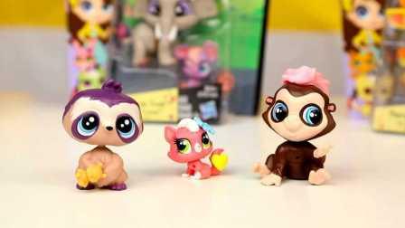 小小宠物店 猫头鹰 猴子 猫猫 动物玩具 试玩