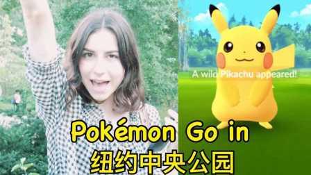 【KatAndSid】Pokémon GO配上中国大爷的二胡食用更佳