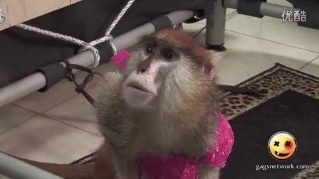 『超级整蛊』250-猴哥误入更衣室(HD高清)