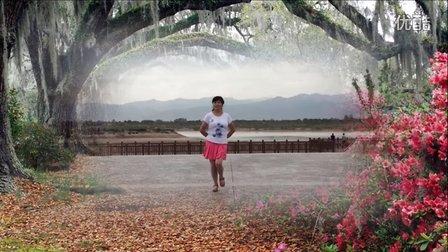 风中梅花广场舞 溜溜的姑娘 杨丽萍编舞 演示制作 梅花
