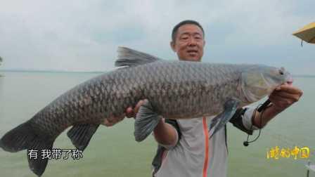 《游钓中国》第二季第16集 上池湖刺青