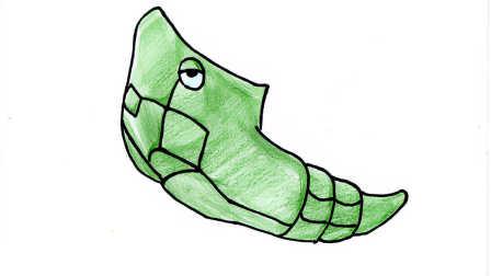 精灵宝可梦神奇宝贝:铁甲蛹简笔画 我的世界宠物大全