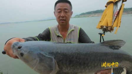 《游钓中国》第二季第17集 齐鲁会青