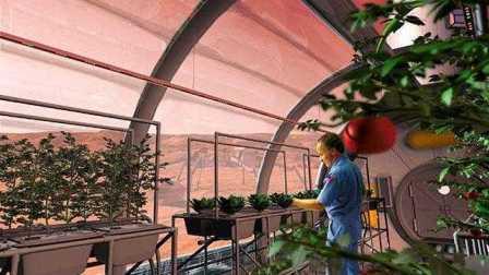 六名科学家生活在一个狭窄的营地里 模拟火星登陆为日后做准备