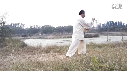 杨氏太极拳第六代弟子陶庆国演练八十五式太极拳