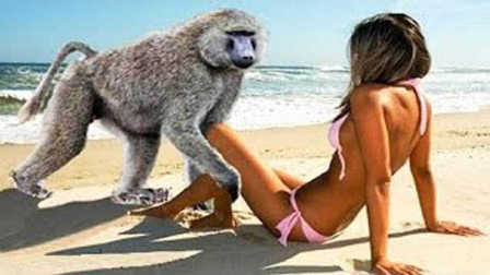 哈密乐乐瓜:哥好羡慕那些调戏美女不被踢的色猴子