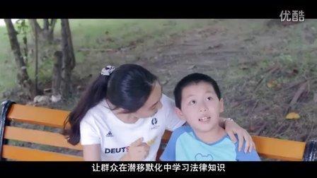 2016雁江区法治宣传片