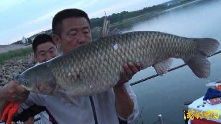 《游钓中国》第二季第20集 下三台再会巨草