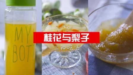 桂花与梨的三种吃法 22