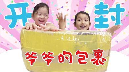 中国爷爷的爱心包裹 每个都是宝宝的最爱 48