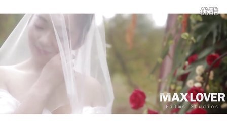 中国·南阳建业森林半岛酒店婚礼10.20即时剪辑版(至爱映像Maxlover2016)
