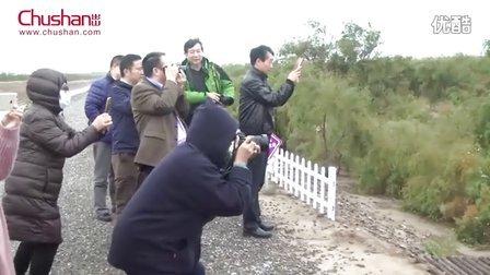黄河文化杯中国拍卖行业文化之旅活动成功举办