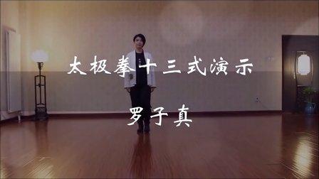 罗子真杨氏太极拳太极拳十三式慢练版(正面+背面)-子真太极