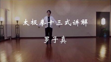 杨氏太极拳免费学杨式太极拳教学视频-太极拳十三式讲解-罗子真-子真太极