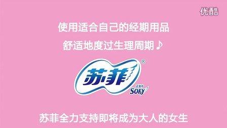 sufei chinese 02 ok