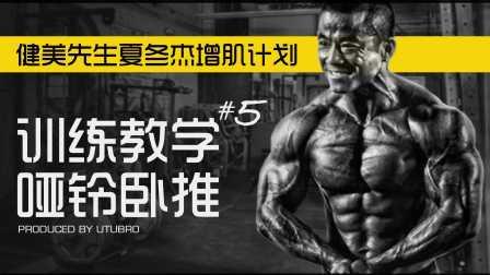 胸肌训练教学