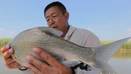 《游钓中国》第二季第24集 查干湖走漂飞鳊
