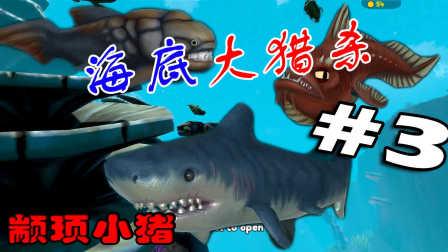 【小猪解说】海底大猎杀#3,这次给你们看看什么是鲨鱼的厉害!