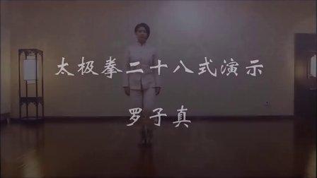 罗子真太极拳28式演示-快练版(正面+背面)