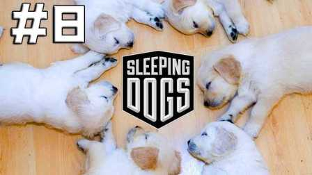 【DEV】【滥用蝙蝠车】热血无赖 Sleeping Dogs 无间道 直播实况 (Part 8)