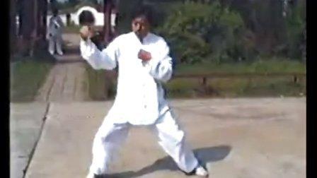 赵家清珍藏1994年8月陈伯祥宗师  珍贵视频陈氏小 架一.二路太极拳经典