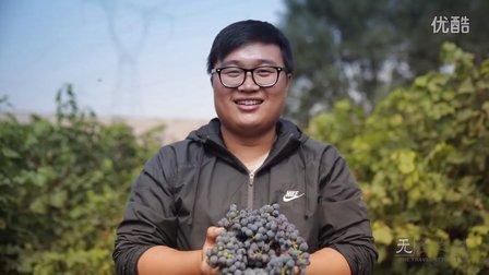 全中国最自由的酿酒社区 | 无径之林
