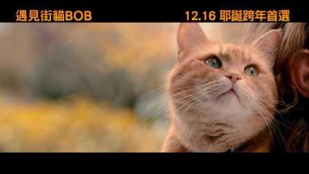 【猴姆独家】《流浪猫鲍勃》曝光全新官方中字电视预告片!