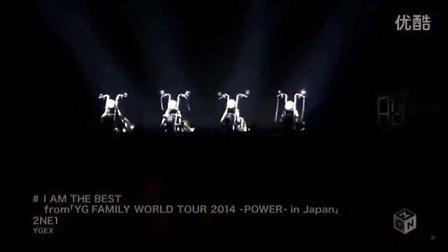 2NE1 - I Am The Best 我最红(YG FAMILY WORLD TOUR 2014 -POWER- In Japan)